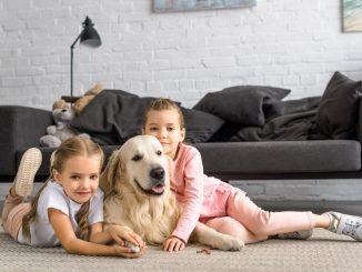 Hund und 2 Kinder